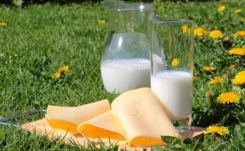 млечни храни