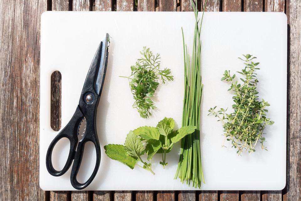 кулинарни ножици